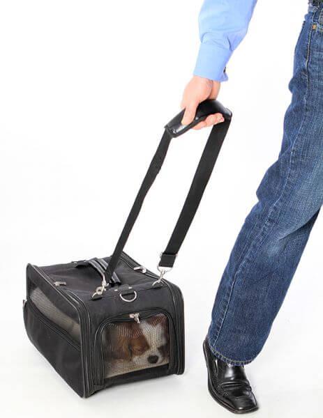TAKE AWAY Flug- und Transporttasche