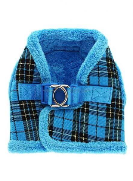 UP BLUE TARTAN WINTER Geschirr