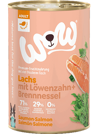 WOW Adult Lachs 400g
