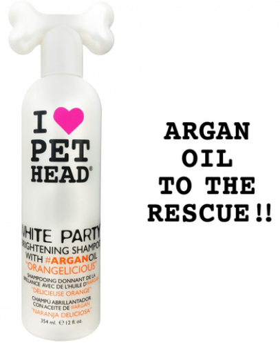 PET HEAD WHITE PARTY Shampoo (354 ml)