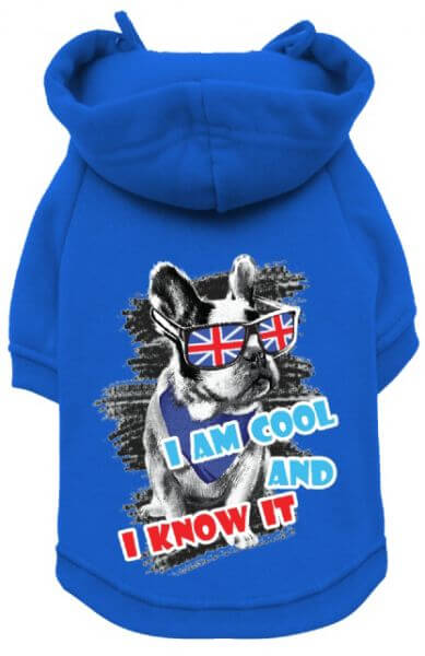 UP COOL AND KNOW IT Sweater mit Hoodie