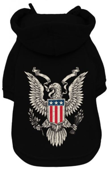 UP AMERICAN EAGLE Kapuzenpullover