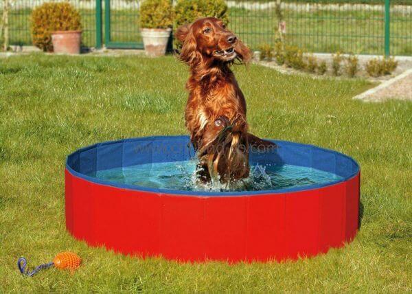 DOGGY POOL Hundepool