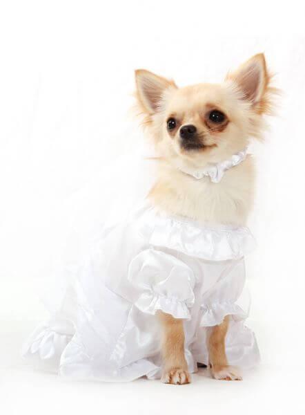 UP HOPE Hochzeitskleid