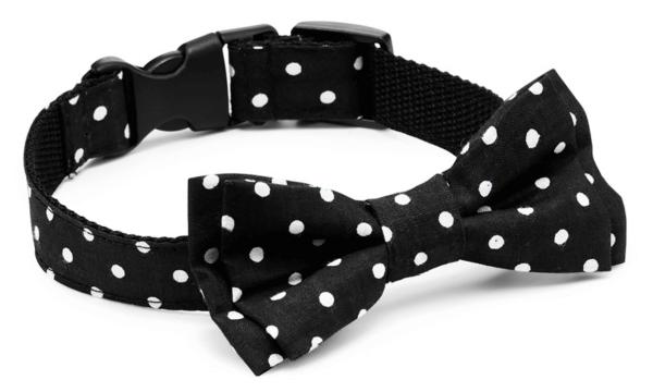 CH Bow Tie Classic Halsband schwarz